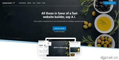 Excellent website construction company